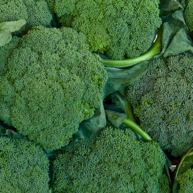 Organic Produce: Broccoli