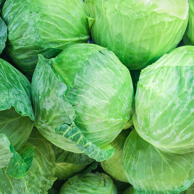 Organic Produce: Green Cabbage
