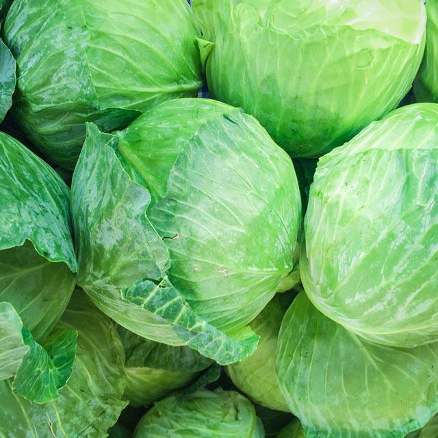Organic Produce: Green Cabbage
