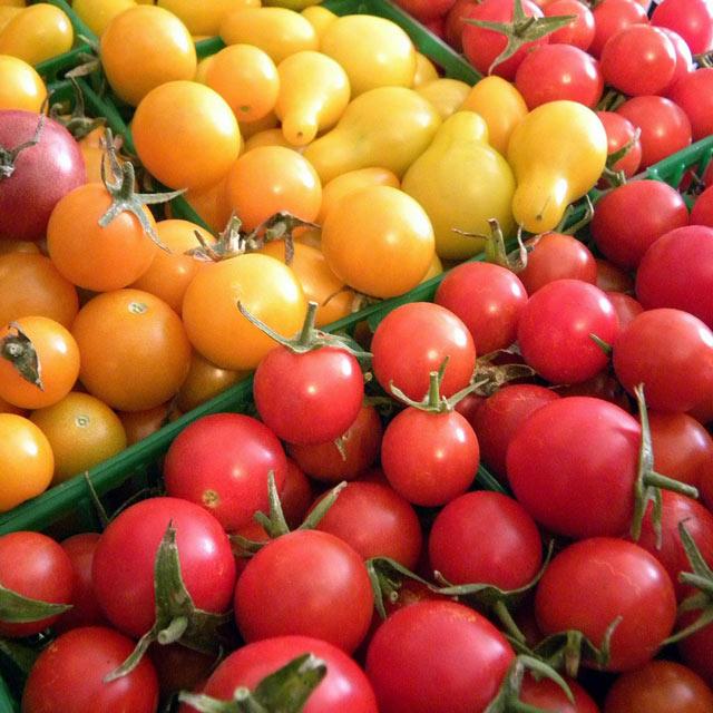 Organic Produce: Tomatoes