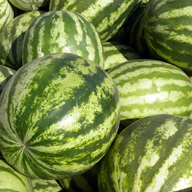 Organic Produce: Watermelon
